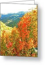 Beautiful Mother Nature  Greeting Card