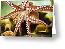 Beautiful Octopus Greeting Card by Marilyn Hunt