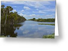 Beautiful Old Florida Greeting Card
