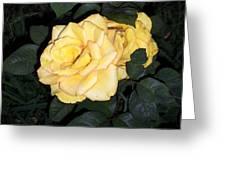 Beautiful Ones Greeting Card