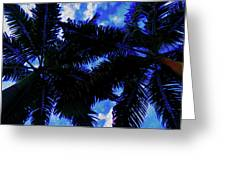 Beautiful Palm In Blue Sky Greeting Card