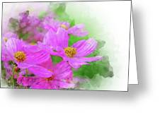 Beautiful Pink Flower Blooming For Background. Greeting Card