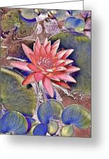 Beautiful Pink Lotus Abstract Greeting Card