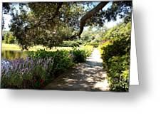 Beautiful Pond Path Greeting Card