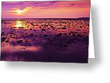 Beautiful Purple Sunset During Tide Shows Up Rocky Beach Greeting Card