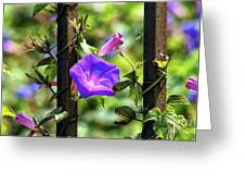 Beautiful Railroad Vine Flower II  Greeting Card