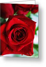 Beautiful Red Rose Abstract 3 Greeting Card