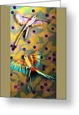 Beautiful Scissor-tailed Flycatchers Greeting Card