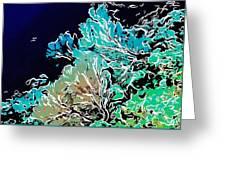 Beautiful Sea Fan Coral 1 Greeting Card