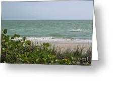 Beautiful Seascape Greeting Card