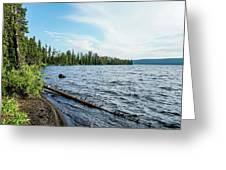 Beautiful Shoreline Greeting Card