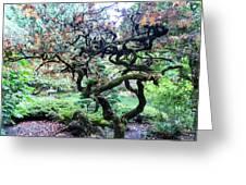 Beautiful Japanese Garden,butchart Gardens,victoria,canada 2. Greeting Card