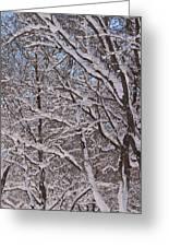 Beautiful Snow Greeting Card