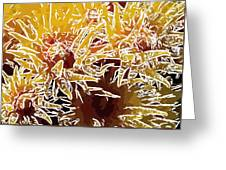 Beautiful Soft Coral Flowers Underwater 1 Greeting Card by Lanjee Chee