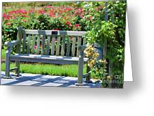 Beautiful Spot For Relaxing 3 Greeting Card