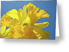 Beautiful Spring Daffodil Bouquet Flowers Blue Sky Art Prints Baslee Troutman Greeting Card