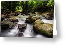 Beautiful Stream In Western Ghats Region Of Karnataka India Greeting Card