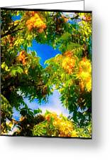 Beautiful Tree Tops In Sky Greeting Card