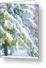 Beautiful Trees Covered With Snow In Winter Park Greeting Card