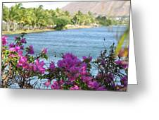 Beautiful Waikiki Greeting Card