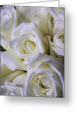 Beautiful White Roses Greeting Card