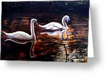 Beautiful White Swans Greeting Card