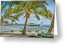 Beautifull Day In Paradise Greeting Card