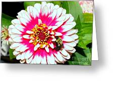 Beauty And The Bee #1 Greeting Card
