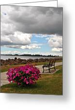 Beauty And The Bench Greeting Card