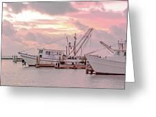 Beauty At The Marina Greeting Card