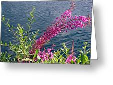 Beauty By Waters Edge Greeting Card