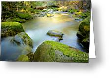 Beauty Creek Greeting Card