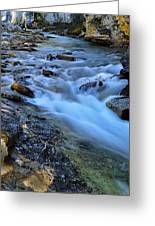 Beauty Creek Greeting Card by Larry Ricker