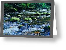 Beauty Discovered In The Wicklow Mountains Greeting Card