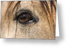 Beauty In The Eye Greeting Card