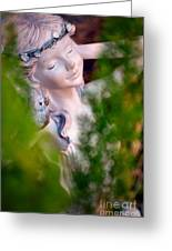 Beauty In The Ferns Greeting Card