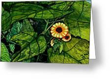 Beauty In The Midst Greeting Card