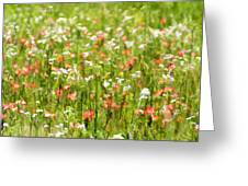 Beauty Is Spring Greeting Card