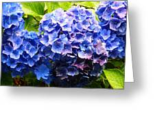 Beauty Of Blue. Greeting Card
