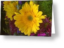 Beauty Of Spring Greeting Card