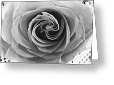 Beauty Of The Rose Ill Greeting Card