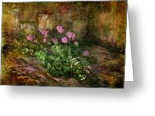 Beauty On An Old Stone Wall Greeting Card