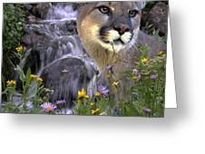 Beauty On The Mountain Greeting Card