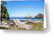 Beauty On The Pacific Coast Greeting Card