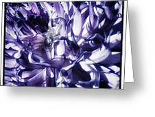 Beauty Out Of Chaos. No Wonder Dahlias Greeting Card