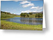 Beauty Swan Lake  Greeting Card