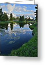 Beaver Dam At Schwabacher Landing Greeting Card
