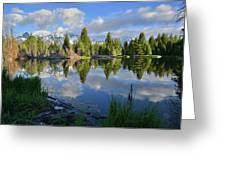 Beaver Dam Reflection In Grand Teton Np Greeting Card