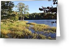 Beaver Lake Scenic View Greeting Card