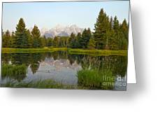 Beaver Pond At Schwabacher Landing Greeting Card